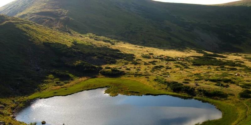 Кунігур (Солотвинські озера)