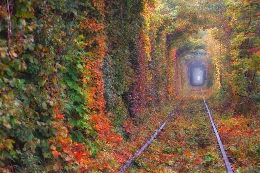 Image result for тунель кохання
