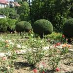 Ужгородський ботанічний сад