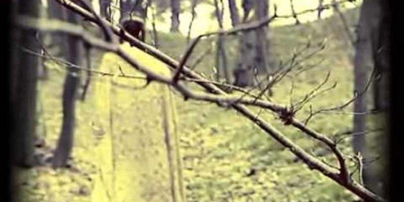 Містичні Історії Старого Львова: Легенда про привида