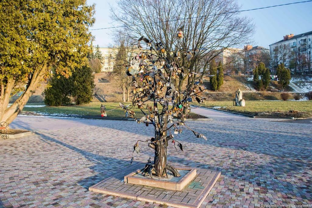 Залізне дерево
