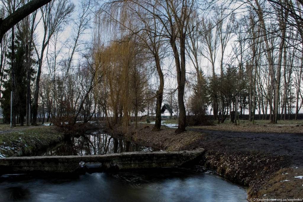 Парк Топільче