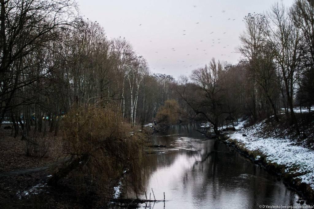 Парк Топільче, річка