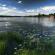 Лісова казка Полісся – національний природній парк Прип'ять – Стохід