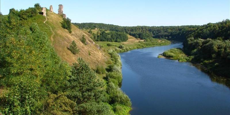 Руїни замку в Губкові