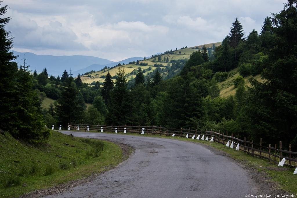 Дорога з Синевирського перевалу