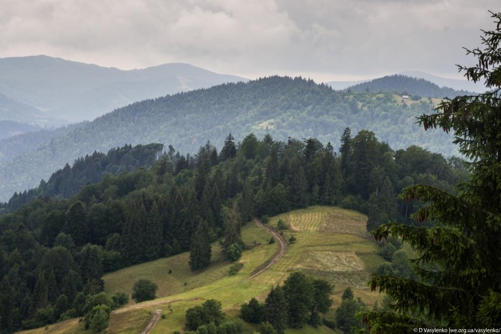 Синевирський перевал